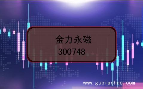 金力永磁的股票代码是什么?(证券代码300748)